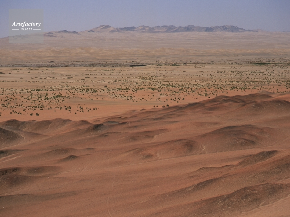 砂漠 ゴビ ツアーでも人気のモンゴル・ゴビ砂漠に行ってみた! その先にあったものとは!?